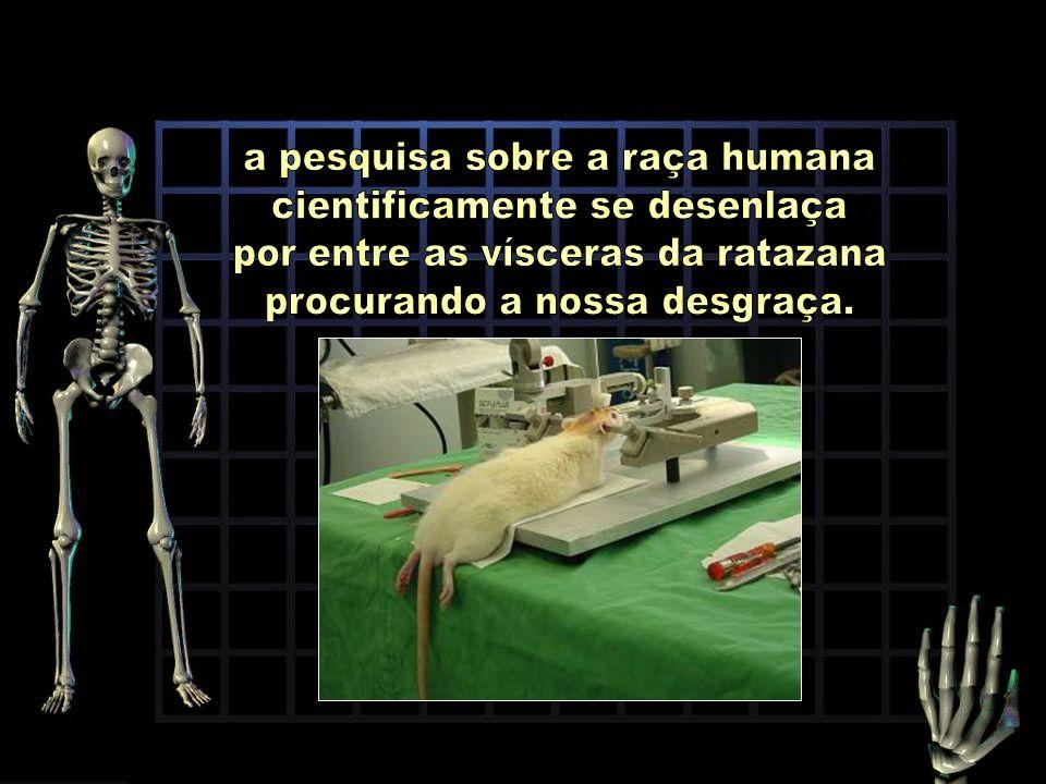 a pesquisa sobre a raça humana cientificamente se desenlaça