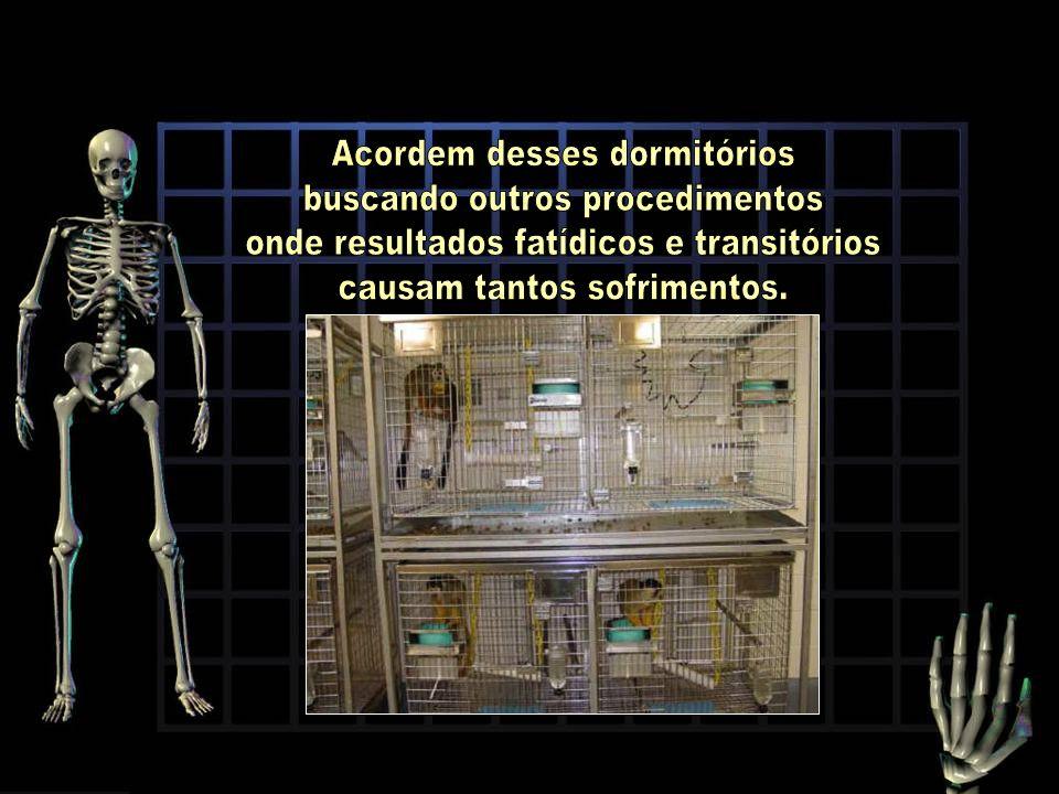 Acordem desses dormitórios buscando outros procedimentos
