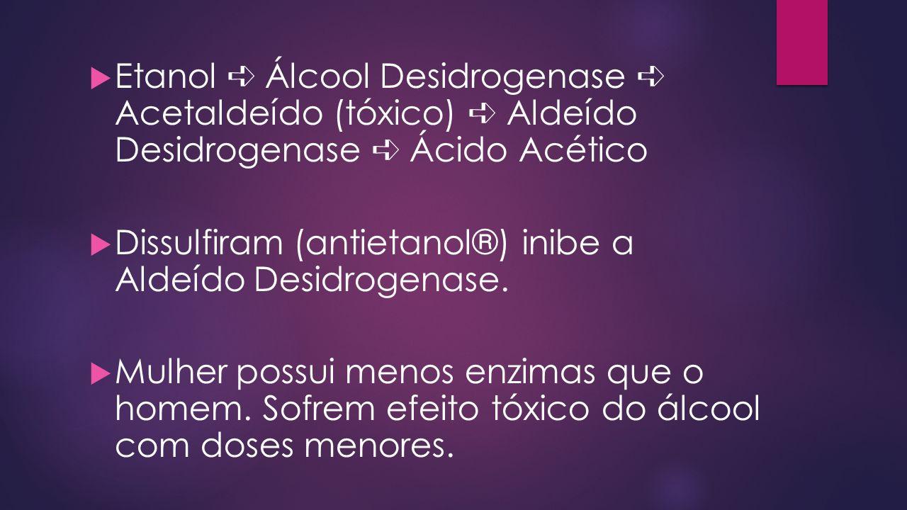 Etanol ➪ Álcool Desidrogenase ➪ Acetaldeído (tóxico) ➪ Aldeído Desidrogenase ➪ Ácido Acético