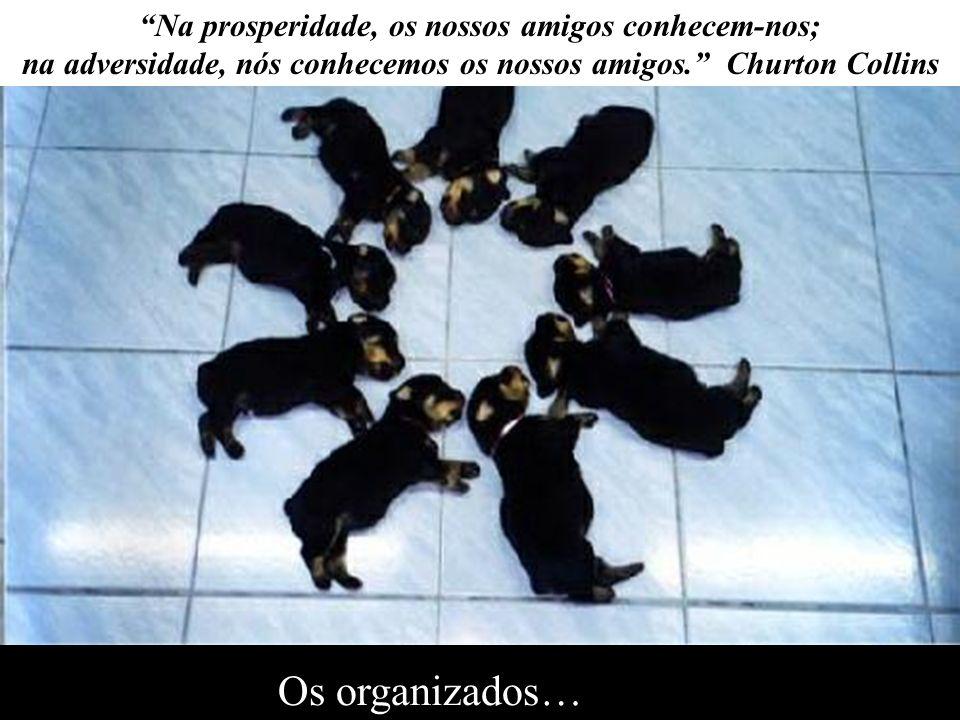 Os organizados… Na prosperidade, os nossos amigos conhecem-nos;
