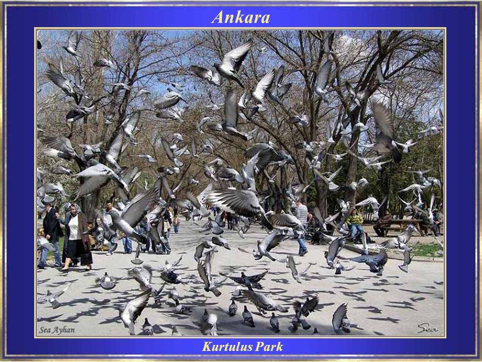 Ankara Kurtulus Park
