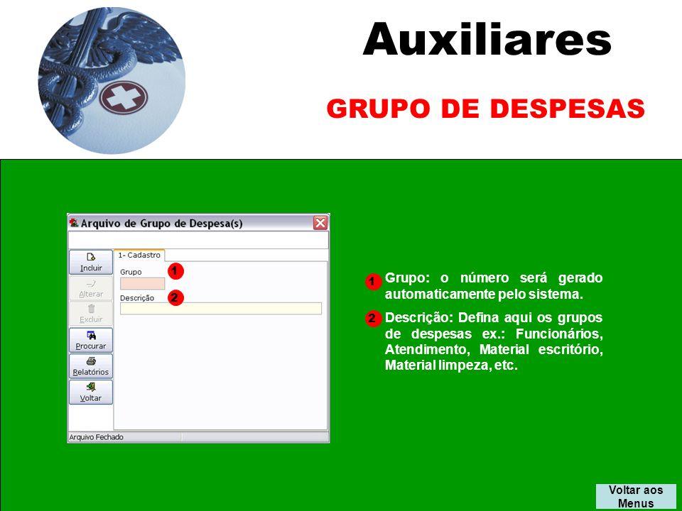 Auxiliares GRUPO DE DESPESAS