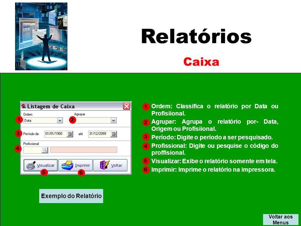 Relatórios Caixa. 1. Ordem: Classifica o relatório por Data ou Profisiional. Agrupar: Agrupa o relatório por- Data, Origem ou Profisiional.