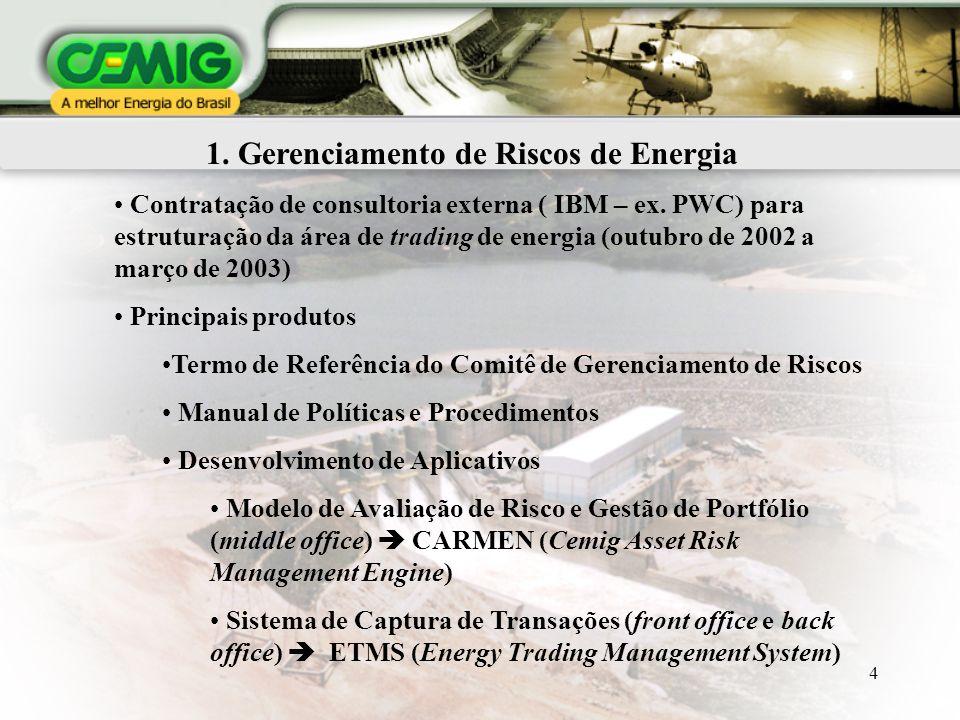 1. Gerenciamento de Riscos de Energia