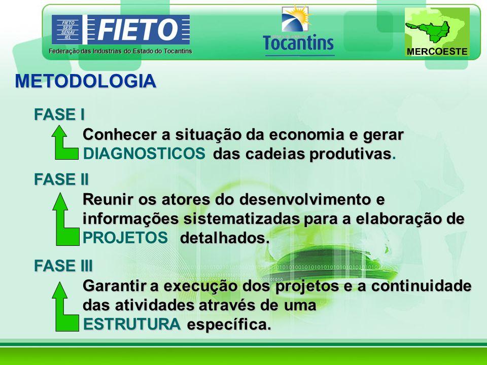 METODOLOGIA FASE I Conhecer a situação da economia e gerar