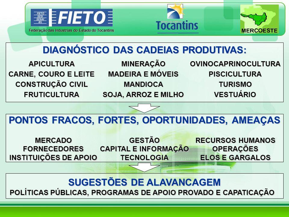 DIAGNÓSTICO DAS CADEIAS PRODUTIVAS: