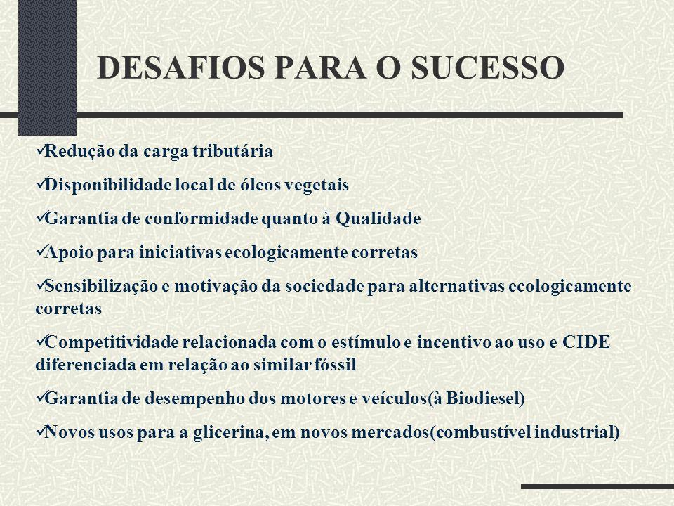DESAFIOS PARA O SUCESSO