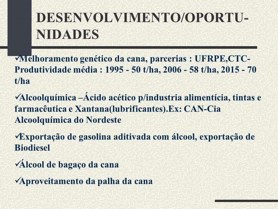 DESENVOLVIMENTO/OPORTU-NIDADES