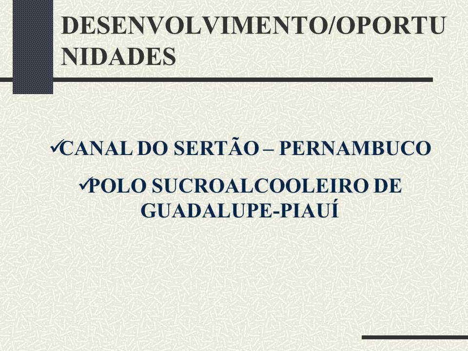 DESENVOLVIMENTO/OPORTUNIDADES