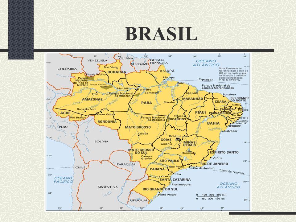 BRASIL Desenvolvido por Guia Internet Brazil ©1999 Info: guianet@guianet.com.br