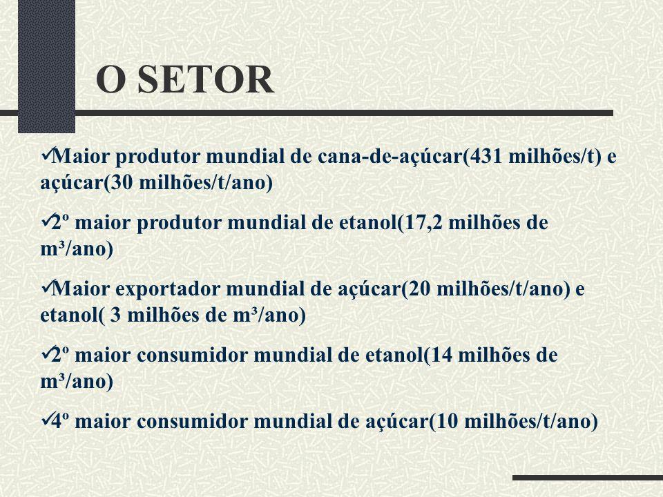 O SETOR Maior produtor mundial de cana-de-açúcar(431 milhões/t) e açúcar(30 milhões/t/ano)