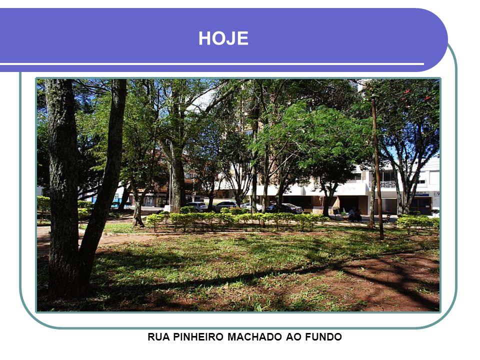 RUA PINHEIRO MACHADO AO FUNDO