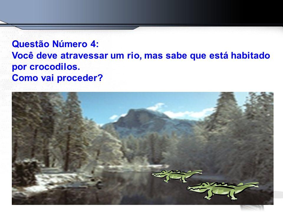 Questão Número 4: Você deve atravessar um rio, mas sabe que está habitado por crocodilos.