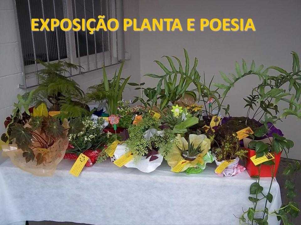 EXPOSIÇÃO PLANTA E POESIA