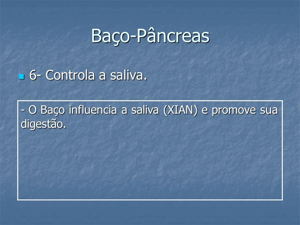 Baço-Pâncreas 6- Controla a saliva.