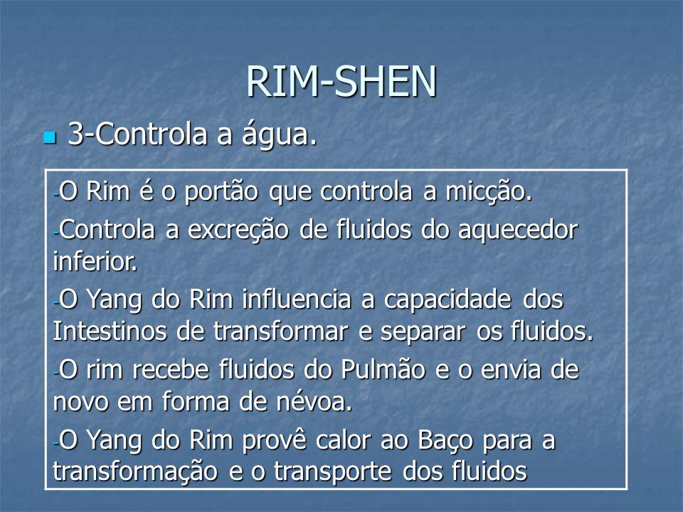 RIM-SHEN 3-Controla a água. O Rim é o portão que controla a micção.