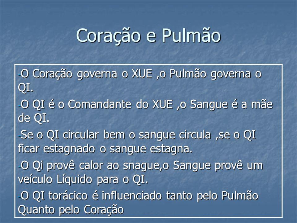 Coração e Pulmão O Coração governa o XUE ,o Pulmão governa o QI.