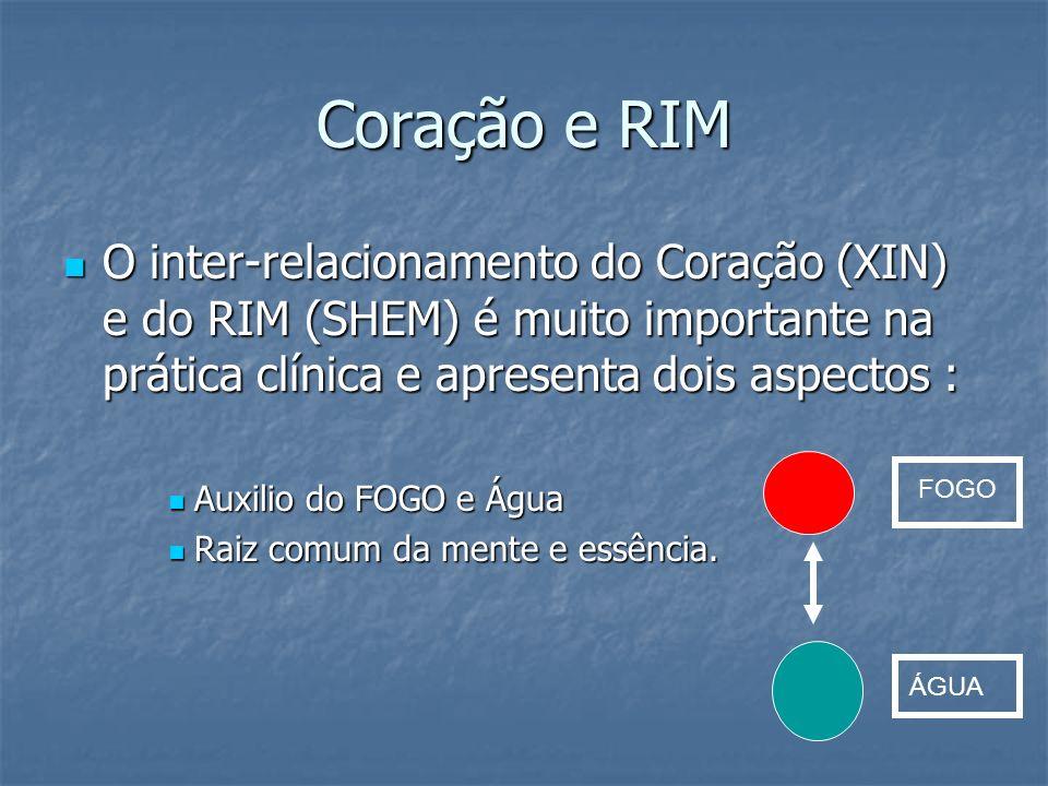 Coração e RIM O inter-relacionamento do Coração (XIN) e do RIM (SHEM) é muito importante na prática clínica e apresenta dois aspectos :