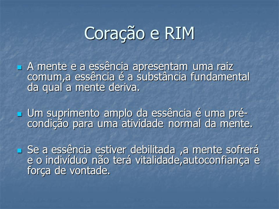 Coração e RIM A mente e a essência apresentam uma raiz comum,a essência é a substância fundamental da qual a mente deriva.