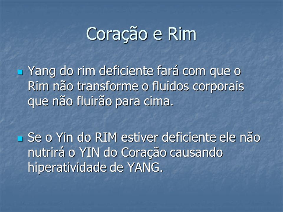 Coração e Rim Yang do rim deficiente fará com que o Rim não transforme o fluidos corporais que não fluirão para cima.