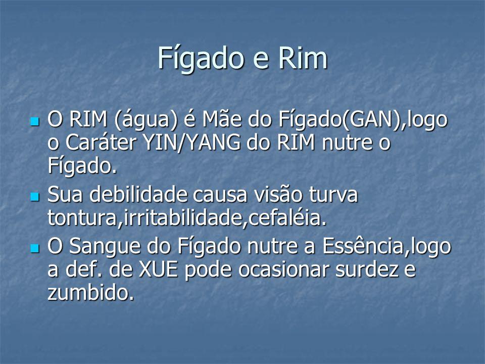 Fígado e Rim O RIM (água) é Mãe do Fígado(GAN),logo o Caráter YIN/YANG do RIM nutre o Fígado.