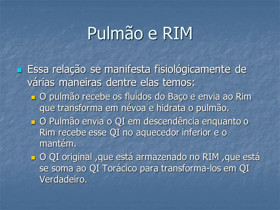 Pulmão e RIM Essa relação se manifesta fisiológicamente de várias maneiras dentre elas temos: