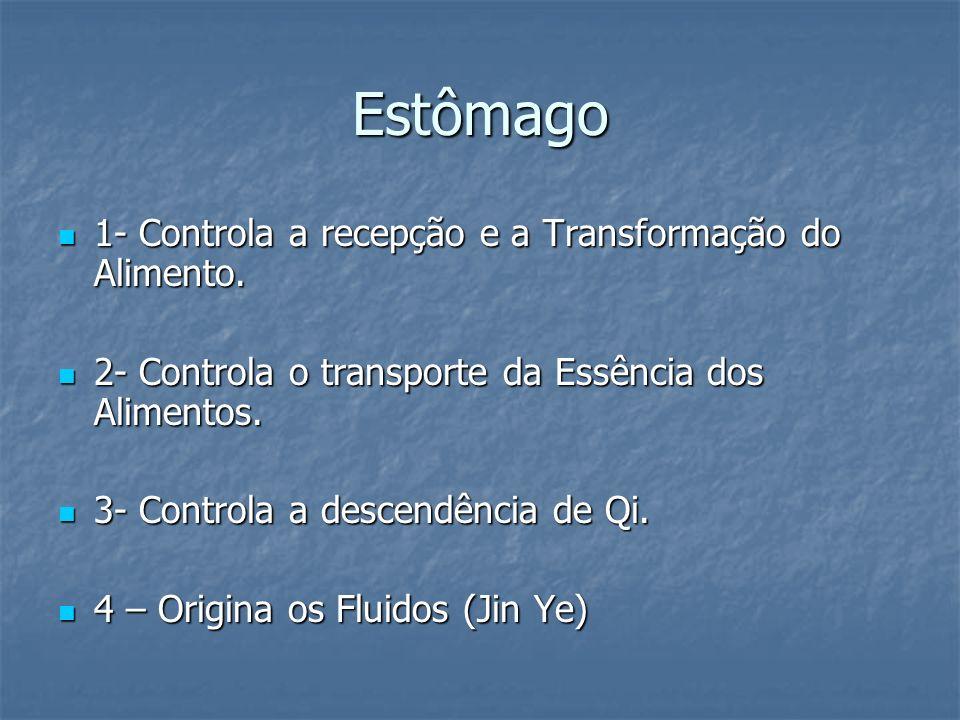 Estômago 1- Controla a recepção e a Transformação do Alimento.