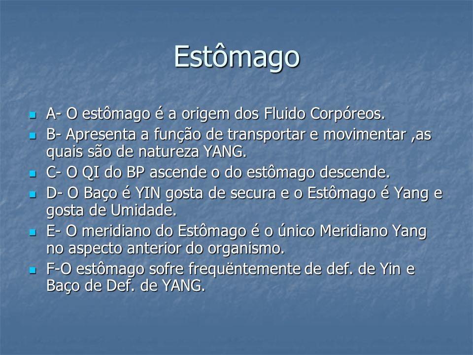 Estômago A- O estômago é a origem dos Fluido Corpóreos.
