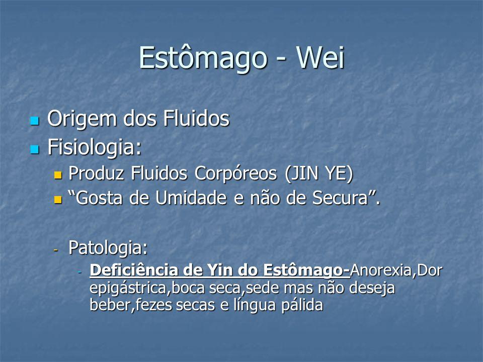 Estômago - Wei Origem dos Fluidos Fisiologia: