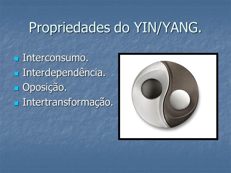 Propriedades do YIN/YANG.