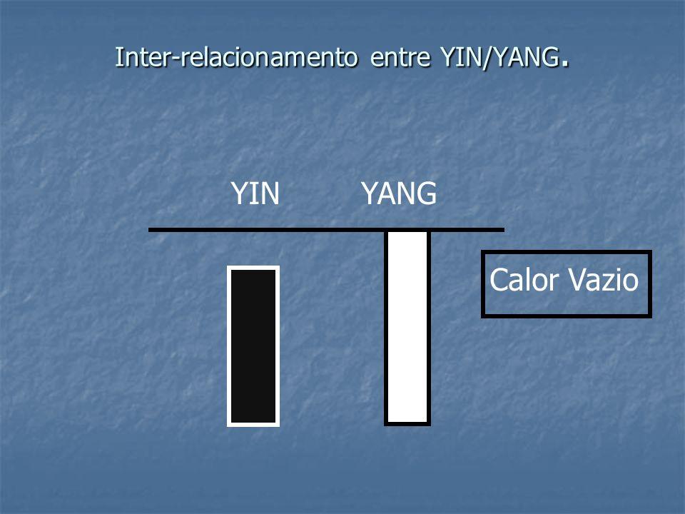 Inter-relacionamento entre YIN/YANG.