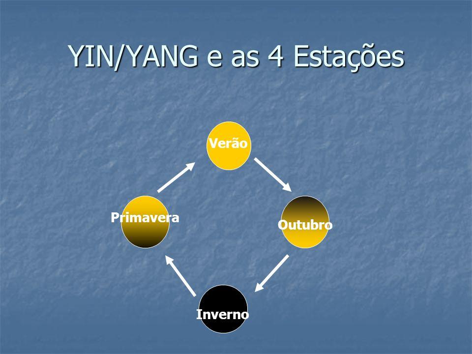 YIN/YANG e as 4 Estações Verão Primavera Outubro Inverno