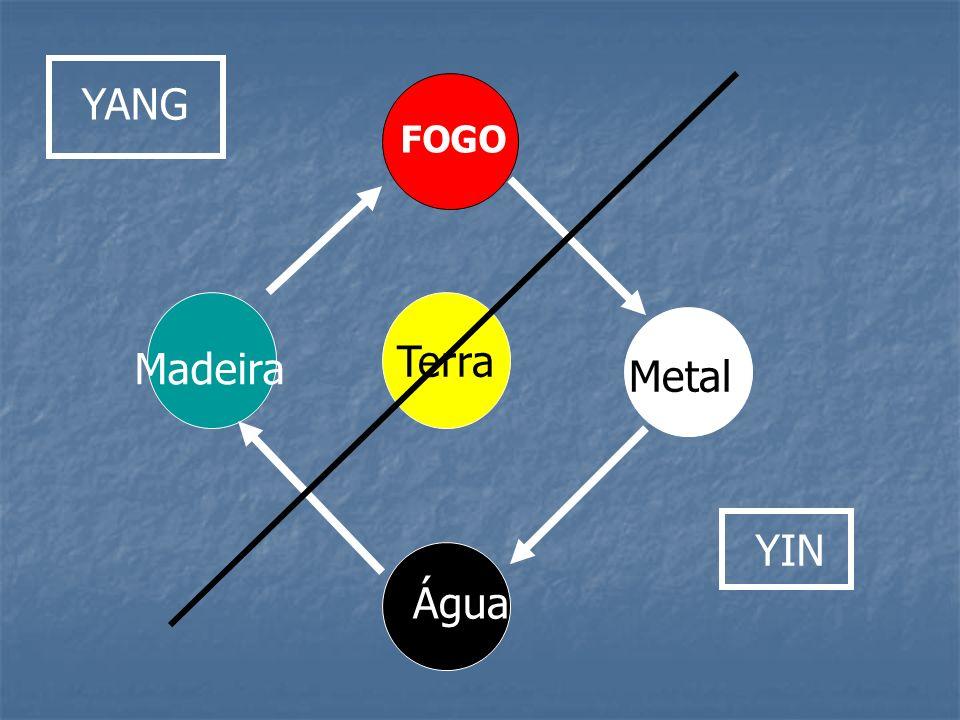 YANG FOGO Terra Madeira Metal YIN Água