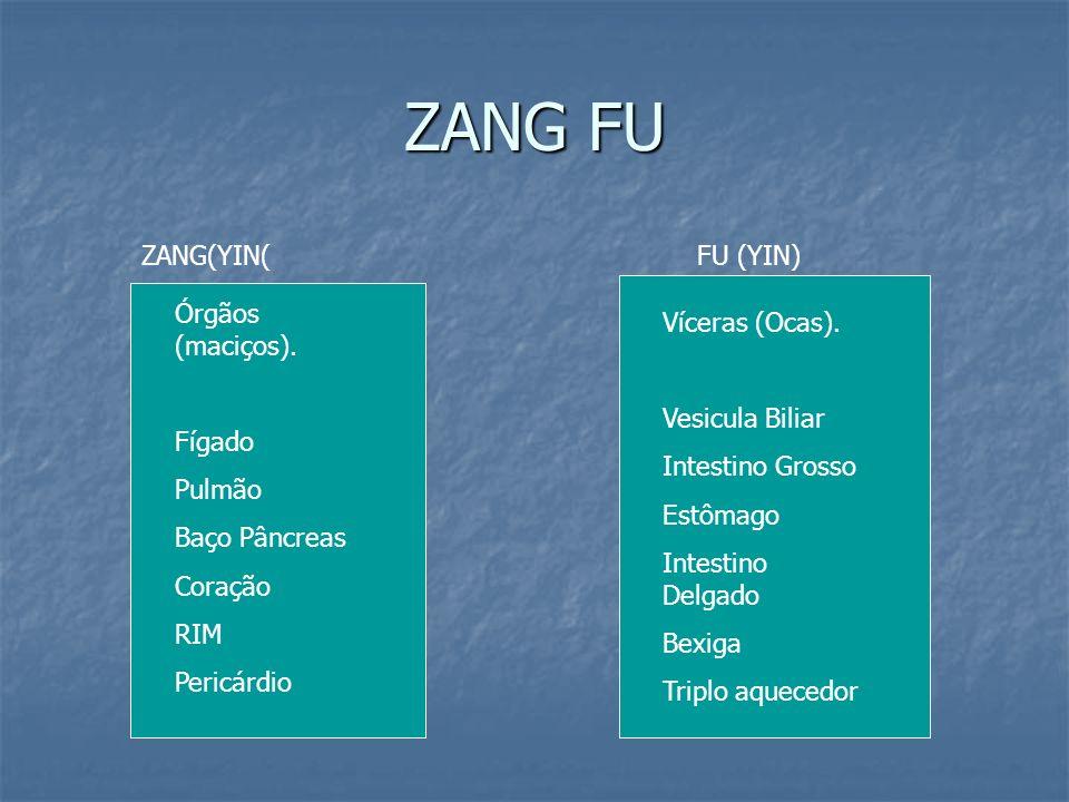 ZANG FU ZANG(YIN( FU (YIN) Órgãos (maciços). Fígado Pulmão
