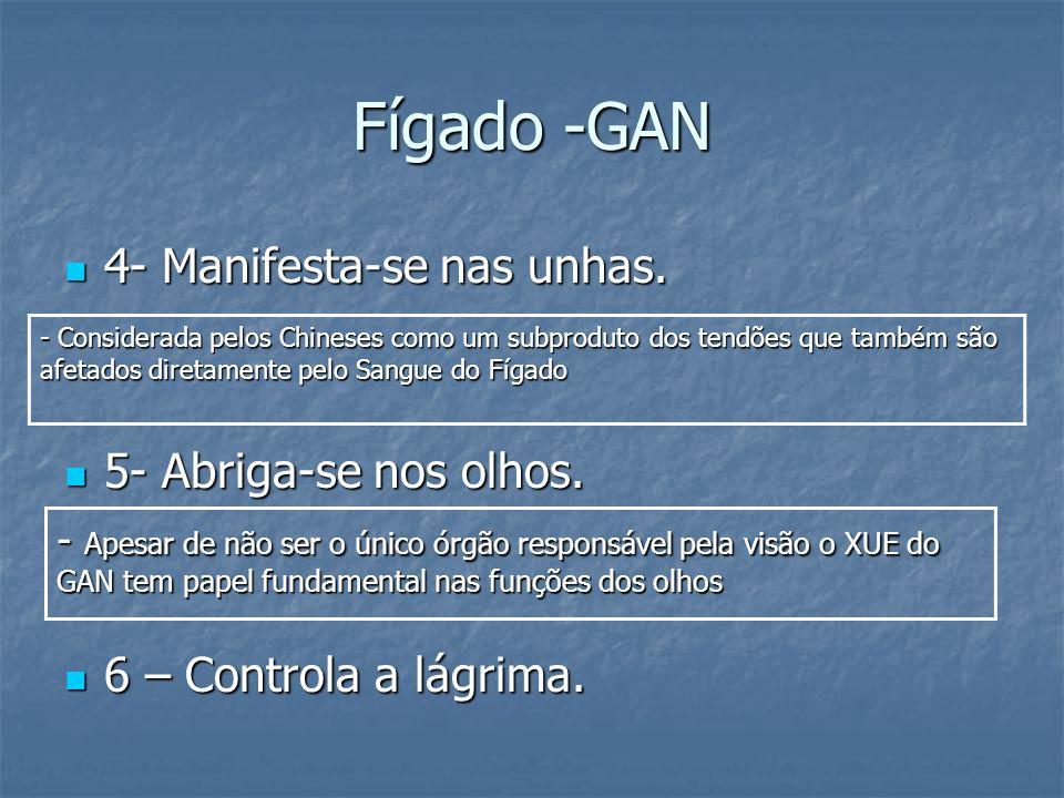 Fígado -GAN 4- Manifesta-se nas unhas. 5- Abriga-se nos olhos.
