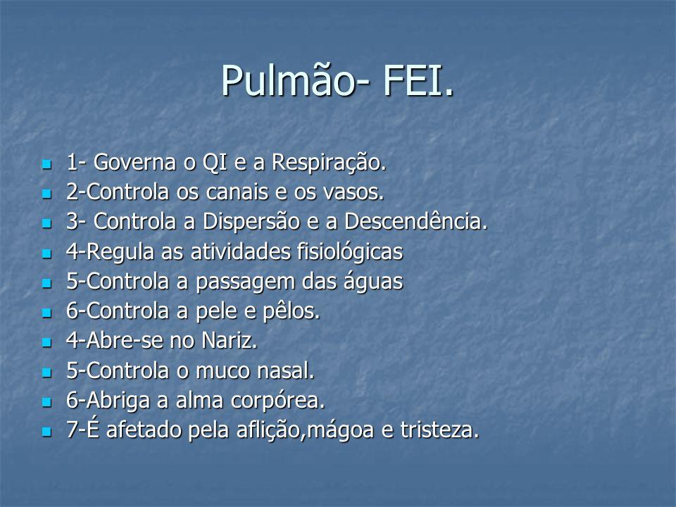 Pulmão- FEI. 1- Governa o QI e a Respiração.