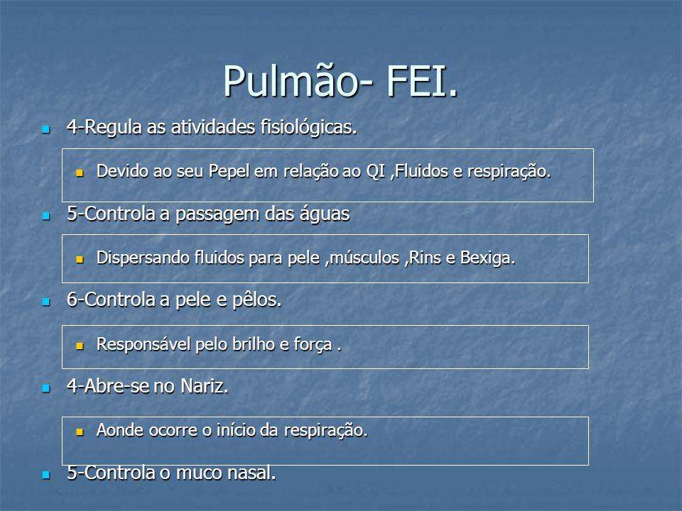 Pulmão- FEI. 4-Regula as atividades fisiológicas.