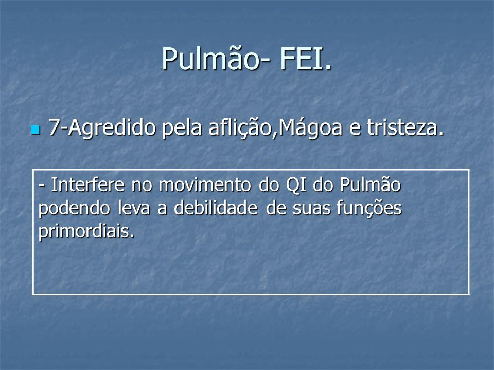 Pulmão- FEI. 7-Agredido pela aflição,Mágoa e tristeza.