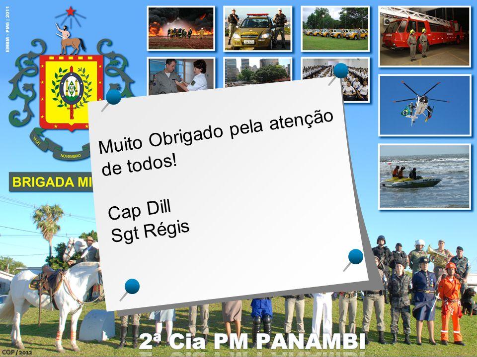 2ª Cia PM PANAMBI Muito Obrigado pela atenção de todos! Cap Dill