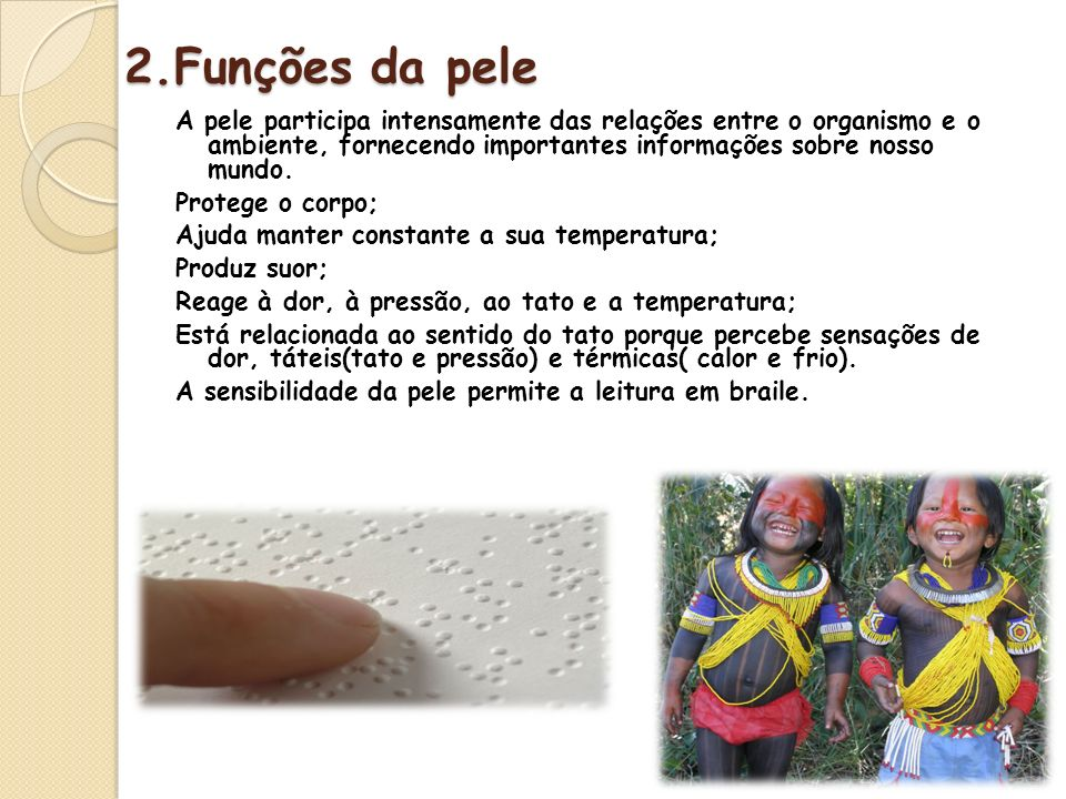 2.Funções da pele