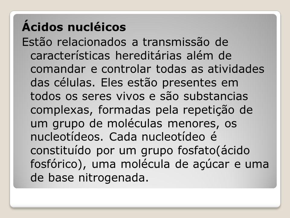 Ácidos nucléicos Estão relacionados a transmissão de características hereditárias além de comandar e controlar todas as atividades das células.