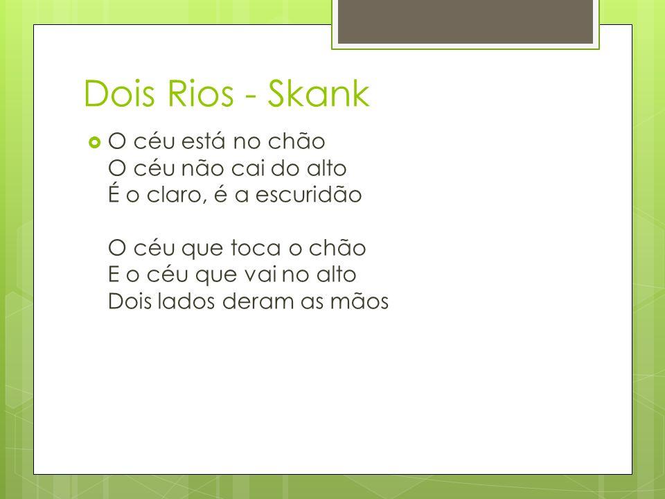 Dois Rios - Skank