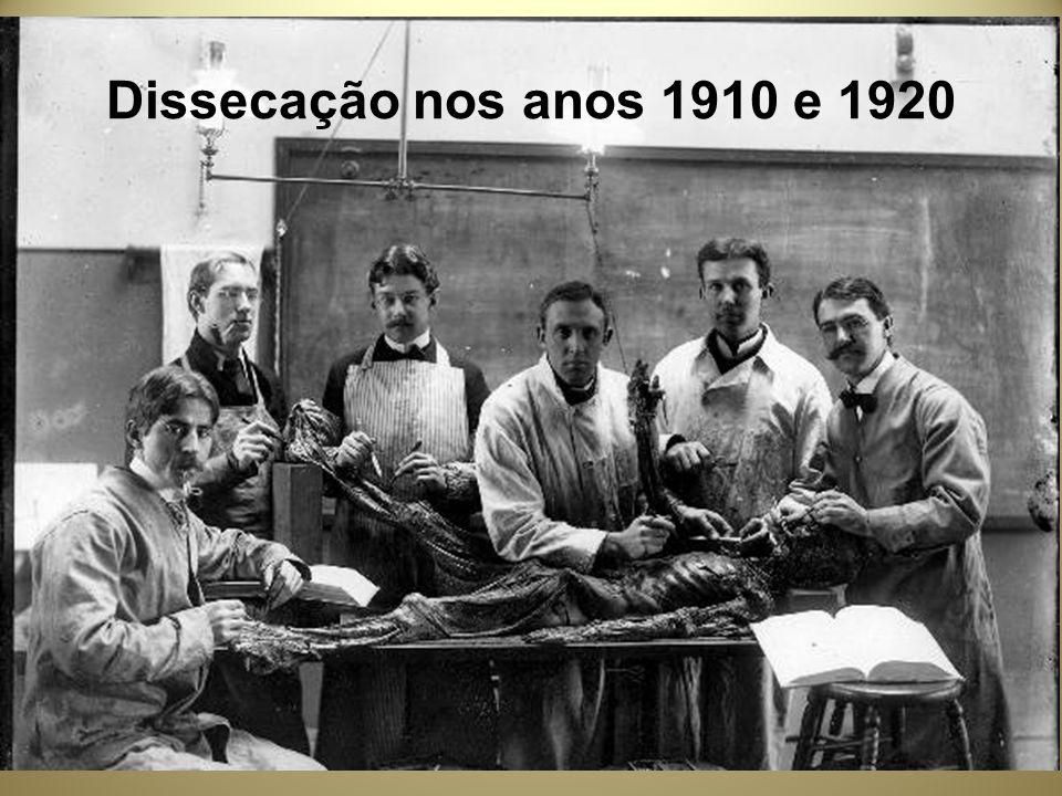 Dissecação nos anos 1910 e 1920