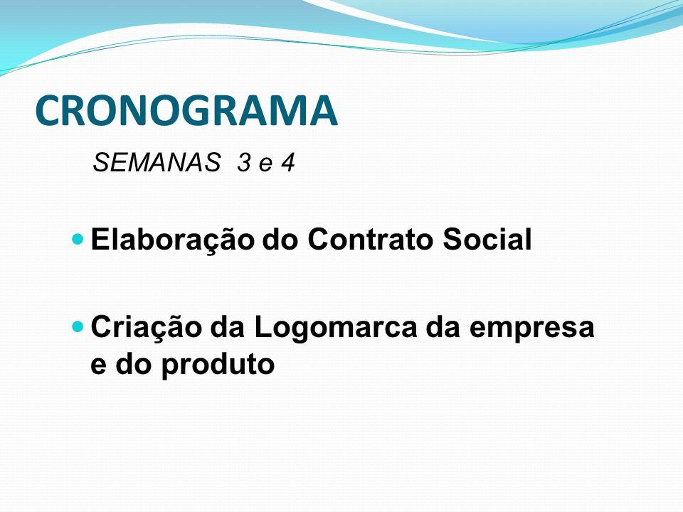 CRONOGRAMA Elaboração do Contrato Social