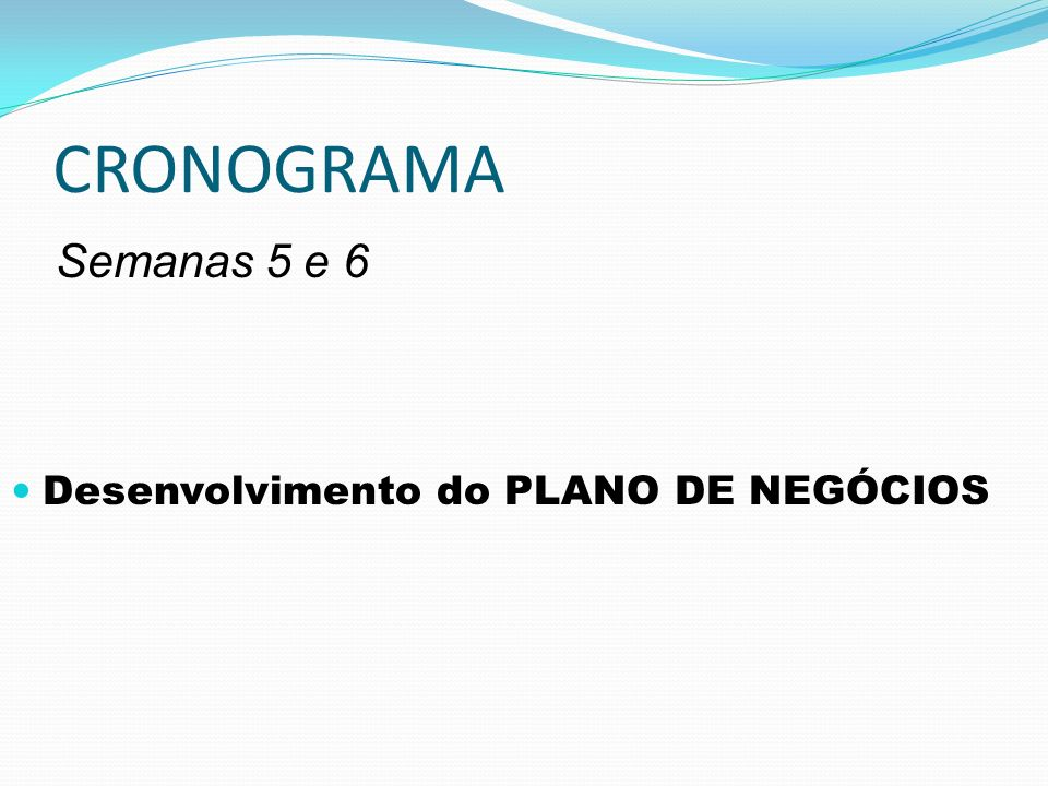 CRONOGRAMA Semanas 5 e 6 Desenvolvimento do PLANO DE NEGÓCIOS