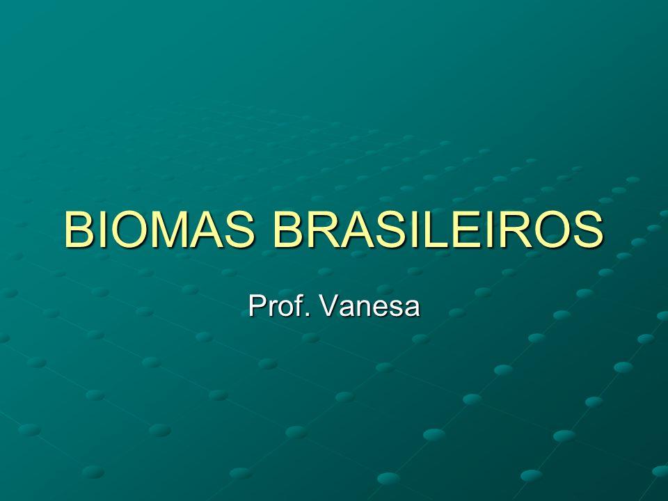 BIOMAS BRASILEIROS Prof. Vanesa
