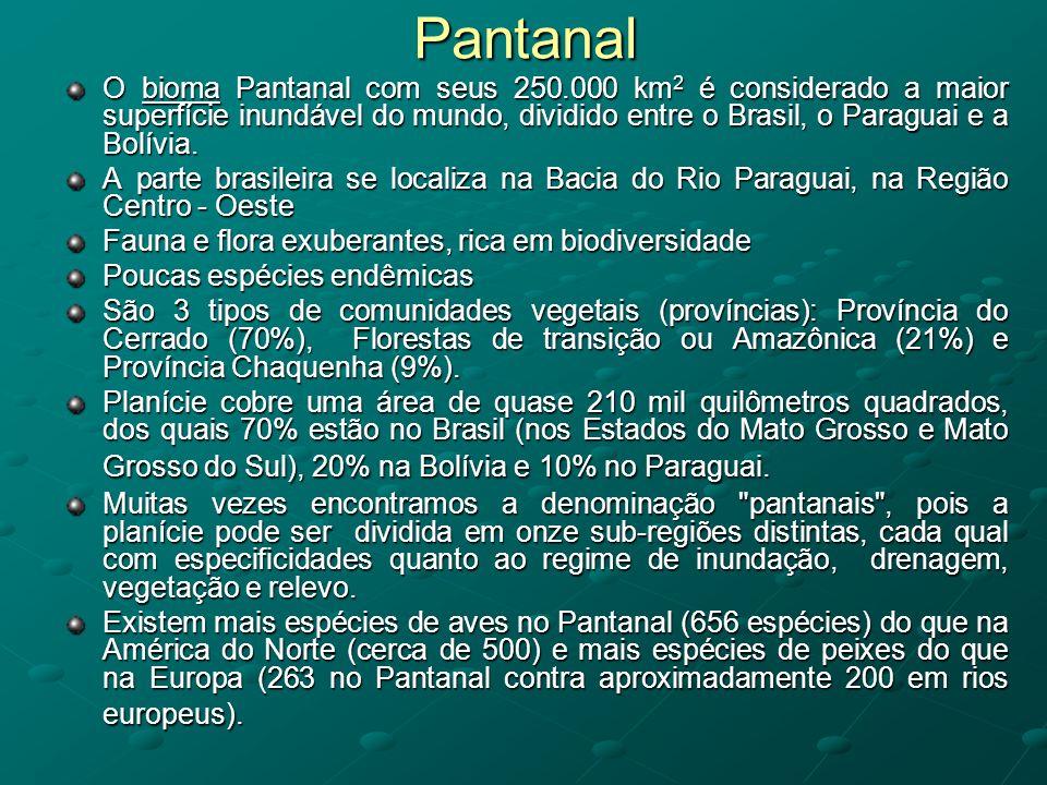 Pantanal O bioma Pantanal com seus 250.000 km2 é considerado a maior superfície inundável do mundo, dividido entre o Brasil, o Paraguai e a Bolívia.