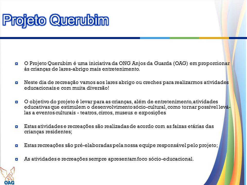 Projeto Querubim O Projeto Querubim é uma iniciativa da ONG Anjos da Guarda (OAG) em proporcionar às crianças de lares-abrigo mais entretenimento.
