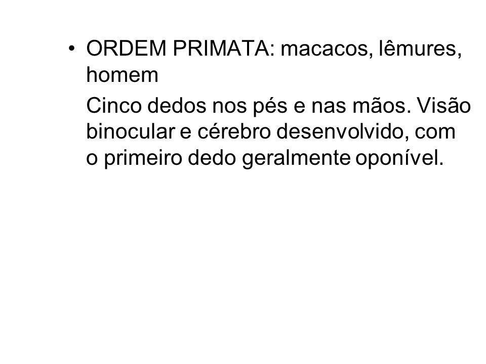 ORDEM PRIMATA: macacos, lêmures, homem