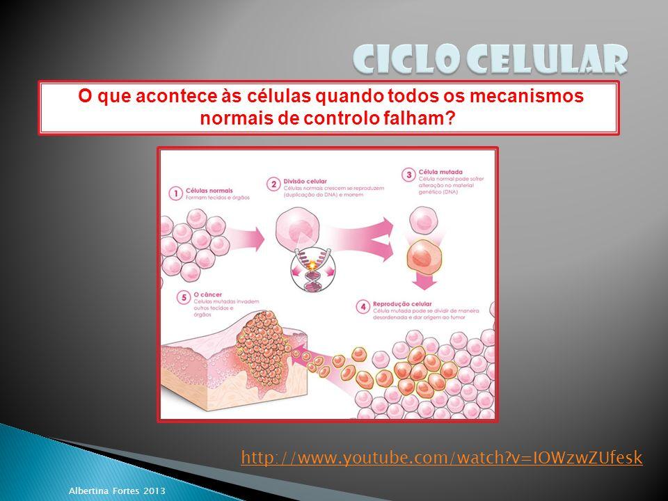 CICLO CELULAR O que acontece às células quando todos os mecanismos